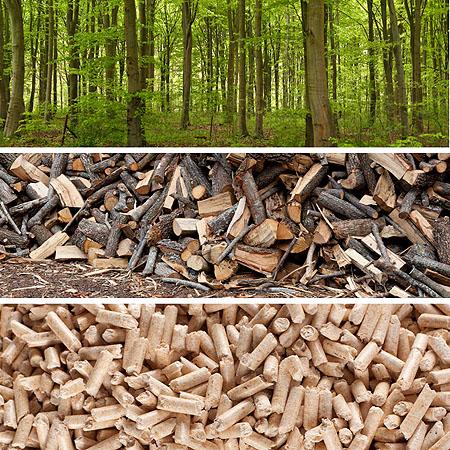 Günstig heizen mit Holzpellets - Preise und Kosten einer (Holz ...